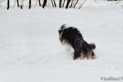 Зима 2013 Прекрасная мелодия любви