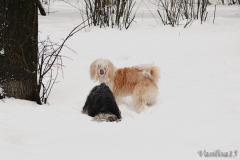 Зима 2013 Клепа и Прекрасная мелодия любви