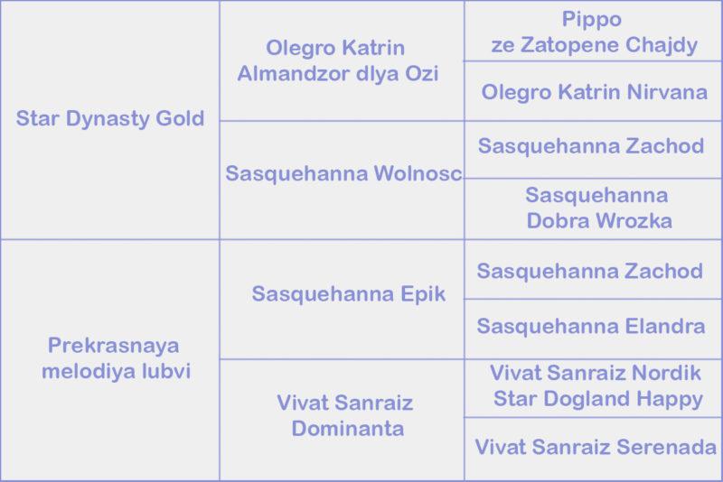 Leksa Gypsy Queen for Oro Antenati